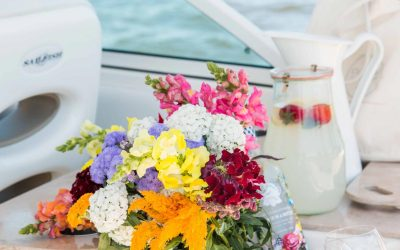 Experience a Private Boat Excursion This Summer…We Did!