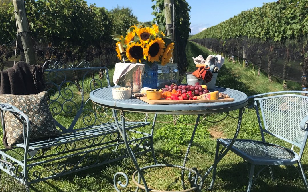 Take an Excursion to the North Fork Vineyards