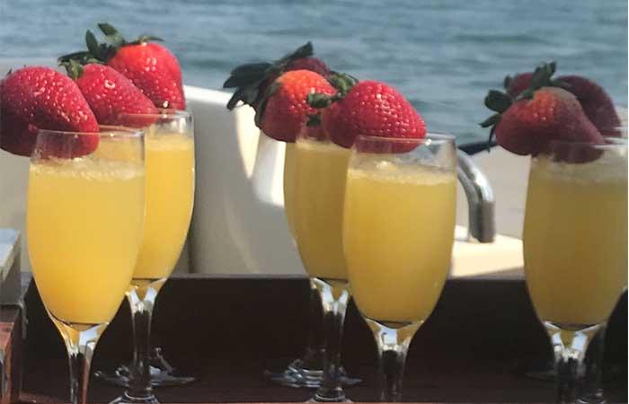 hamptons-boat-excursions-concierge-services-7